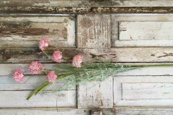 Kornblumenstrauß, rosa