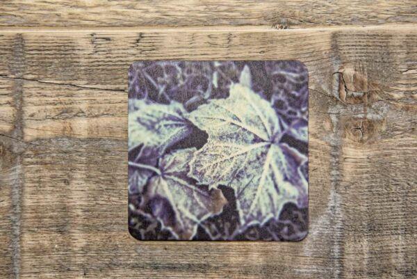 Holzpostkarte 'Frozen Maple'